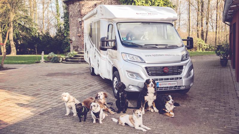 Una Autocaravana Especial Para Dueños De Perros: El DogLiner
